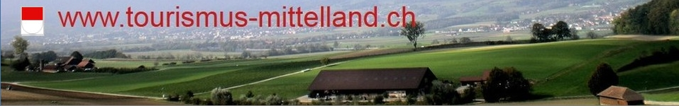 immobilien solothurn094