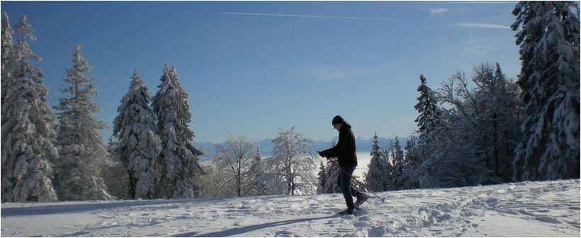freie skifotos schweiz